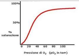 Fig. 2 Curva di saturazione dell'emoglobina con l'ossigeno
