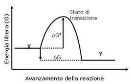 Fig. 1 Grafico della coordinata di reazione di una reazione chimica.