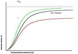 Fig. 2. Effetto di un modulatore positivo (verde) e di un modulatore negativo (rosso) su un enzima allosterico