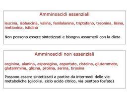 Fig. 1 Amminoacidi essenziali e non essenziali