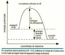 Diagramma di variazione dell'energia potenziale