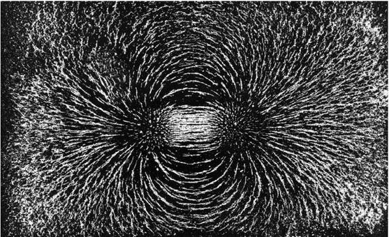 Foto di linee di campo: Magnete a barretta