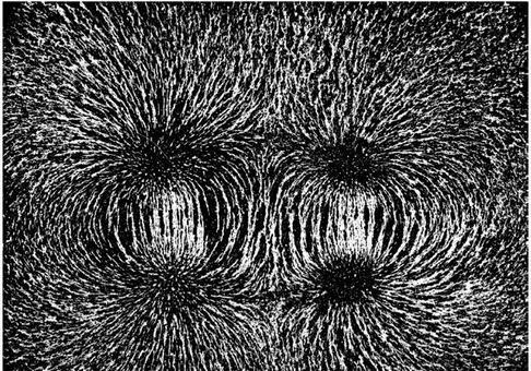 Foto di linee di campo: 2 Magneti a barretta, poli omonimi affacciati