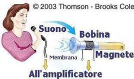 Schema di funzionamento di un microfono a membrana