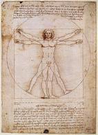 """""""L'uomo vitruviano"""", disegnato da Leonardo (Fonte: Wikimedia)"""