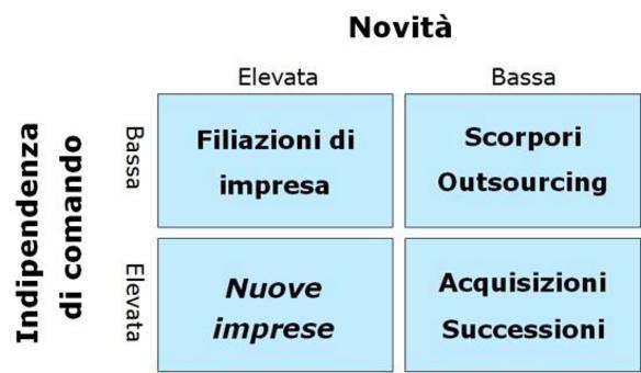 In base al grado di novità dell'impresa ed all'indipendenza di comando rispetto all'impresa madre si possono distinguere diverse situazioni (Sorrentino, 2003) .