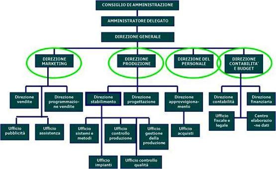 Un esempio di organigramma per un modello funzionale.