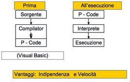 P. Code (Pseudocodici)