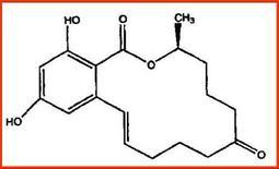 Struttura chimica del 17-β estradiolo