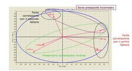 Il cerchio delle correlazioni