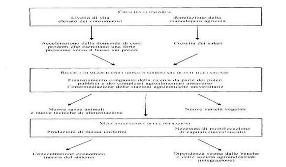 Fonte: Formica, 1999, p.148.