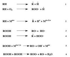 Azione del catalizzatore e iniziazione secondaria.