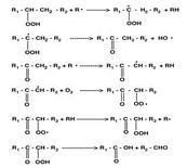 Formazione di acidi.