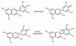 Reazione di addizione dell'SO2 con gli antociani.
