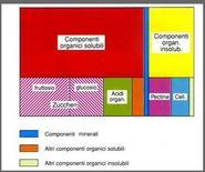 Composizione media del residuo secco (da Leoni)