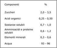 Composizione media del succo di pomodoro (da Leoni)