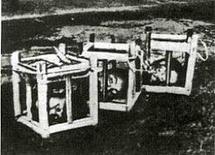Teste mozzate di contadini esposte in gabbie di vetro a Isernia durante la repressione del brigantaggio. Fonte: Wikipedia.