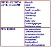Batteri responsbili di malattie alimentari