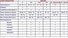 Caratteristiche dei ceppi produttori di tossine botuliniche