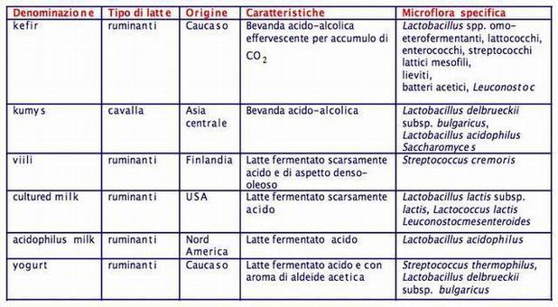 Bevande fermentate lattiche più comuni