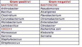 Popolazioni microbiche alterative e psicrotrofiche