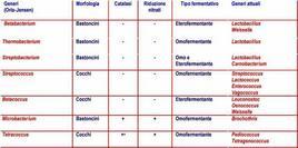 Classificazione dei batteri lattici secondo Orla-Jensen