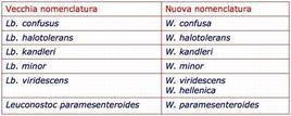 Vecchia e nuova nomenclatura del genere Weissella