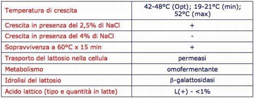 Caratteristiche di Streptococcus thermophilus