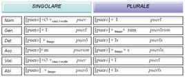 I paradigmi dei temi in -o- con -r-