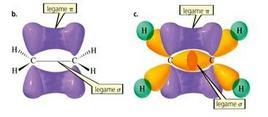 Formazione del doppio legame carbonio-carbonio