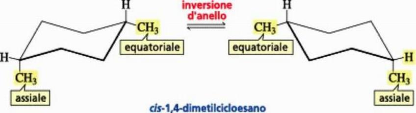 Equilibrio conformazionale per il cis-1,4-dimetilcicloesano