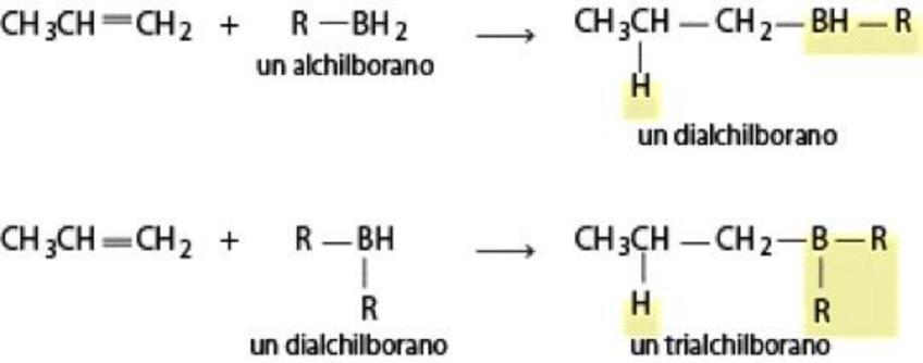 L'alchilborano reagisce con altre due molecole di alchene per formare un trialchilborano
