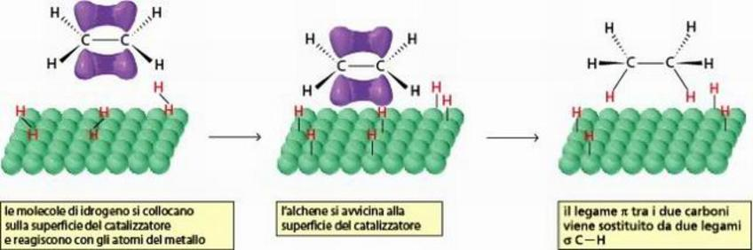 Alchene e H2 sono adsorbiti sulla superficie del metallo