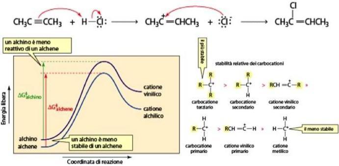 Un alchino è meno stabile e meno reattivo di un alchene