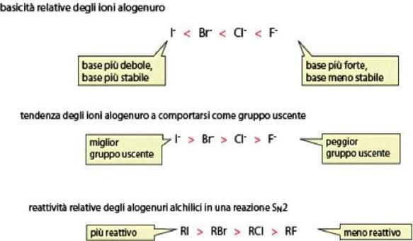Minore è la basicità dello ione alogenuro, migliore è la sua attitudine a comportarsi da gruppo uscente