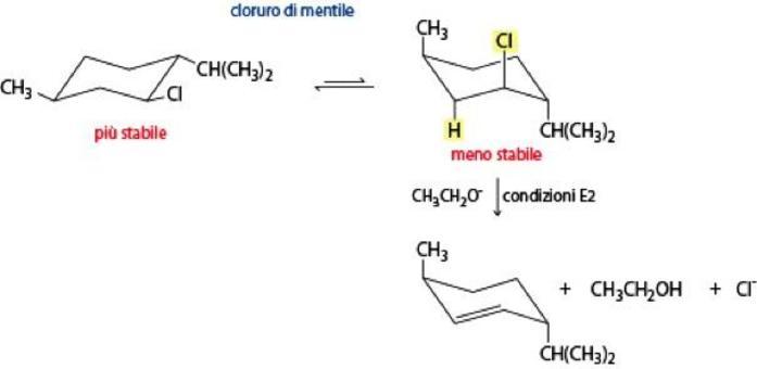Nei composti ciclici può reagire anche il conformero meno stabile: esempio eliminazione del cloruro di mentile