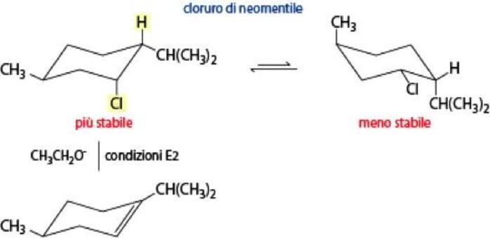 L'eliminazione dal cloruro di neomentile è più veloce: reagisce il conformero più stabile