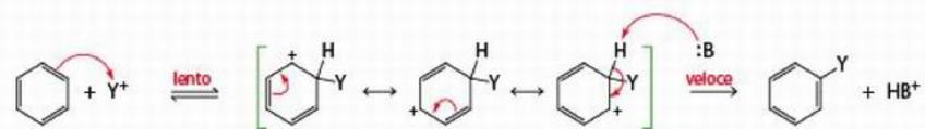 Meccanismo generale della reazione di sostituzione elettrofila aromatica