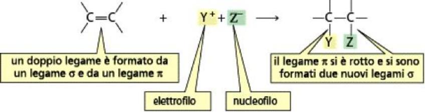 Reattività degli alcheni: la reazione di addizione elettrofila