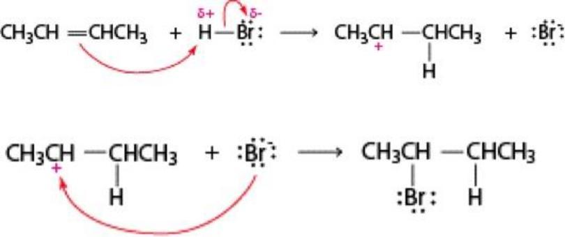Addizione di acidi alogenidrici: meccanismo a due stadi