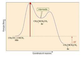 Il decorso cinetico dipende solo dall'energia dello stato di transizione