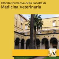 Offerta Formativa di Medicina Veterinaria