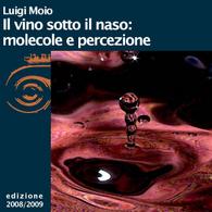 Luigi Moio, Il vino sotto il naso: molecole e percezione