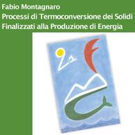 Processi di Termoconversione dei Solidi Finalizzati alla Produzione di Energia
