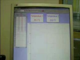 Messa in evidenza della risposta temporale del termometro.